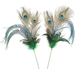 """27"""" PEACOCK FEATHER SPRAY PICK"""