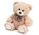"PLUSH 10"" BROWN BEAR"