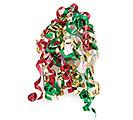CHRISTMAS SWIRLS RIBBON W/ADHESIVE BACK