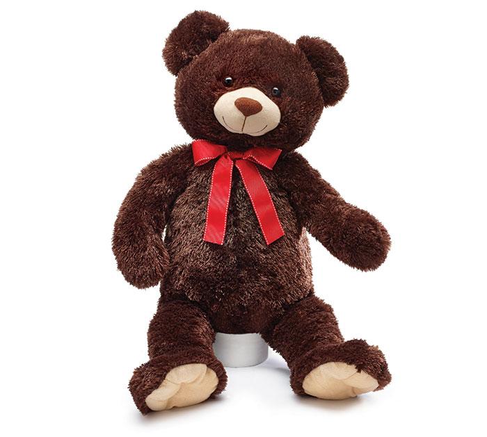 CASE PLUSH BROWN VALENTINE BEAR