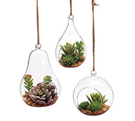 HANGING ORNAMENT SUCCULENTS IN GLASS