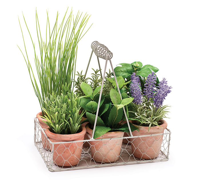FLORAL CADDY HOLDING 6 POTTED HERBS