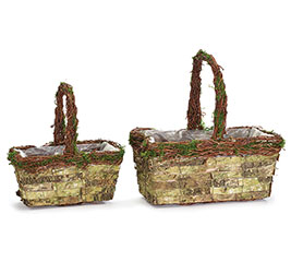 BIRCH BARK AND GRAPEVINE NESTED BASKETS