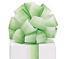 #9 WHITE AND GREEN WATERCOLOR RIBBON