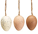 NATURAL SPECKLED EGG ORNAMENT W/CRATE