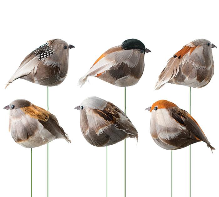 NATURAL BIRD PICK CHUBBY NATURAL ASTD