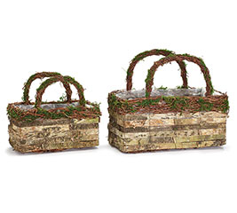 BIRCH BARK/GRAPEVINE BASKET SET