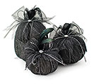 BLACK VARIED PUMPKINS SPIDER WEB OVERLAY