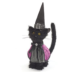 HALLOWEEN CAT IN WITCH HAT