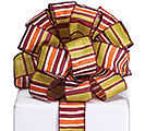 #9 AUTUMN STRIPE RIBBON
