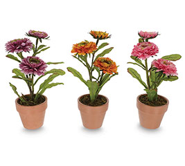 """10"""" POTTED ASTER BLOOMS WITH LEAVES"""