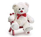 "10"" WHITE VALENTINE BEAR CASE PACK"
