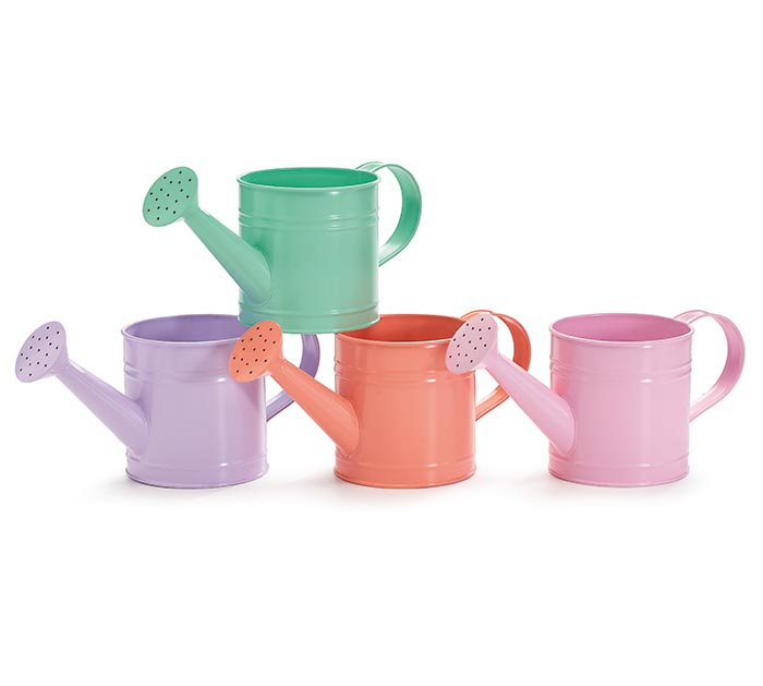 SPRING WATERING CAN PLANTER ASSORTMENT