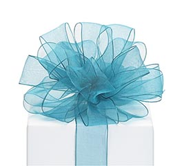 RIBBON #9 SHEER TEAL