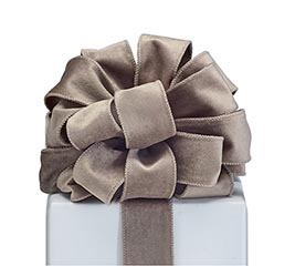 #9 WARM GRAY VELVET RIBBON
