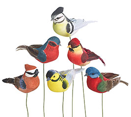 COLORFUL ASSORTED BIRD PICK SET