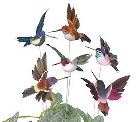 NATURAL HUMMINGBIRD PICK SET