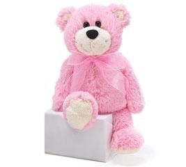 PLUSH PINK VALENTINE BEAR
