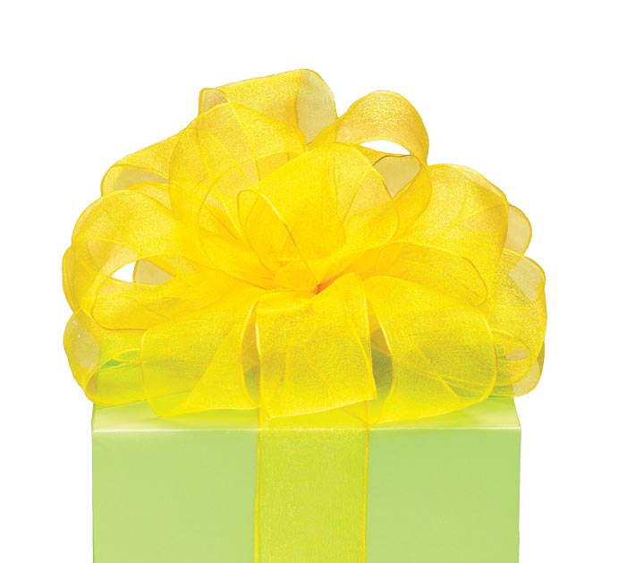 #9 SHEER YELLOW WIRED RIBBON