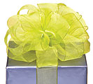 39 SHEER LIME GREEN WIRED RIBBON