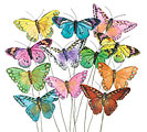 COLORFUL FEATHERS BUTTERFLY PICK SET