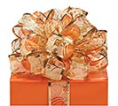 #9 FALL PUMPKIN SHEER WIRED RIBBON