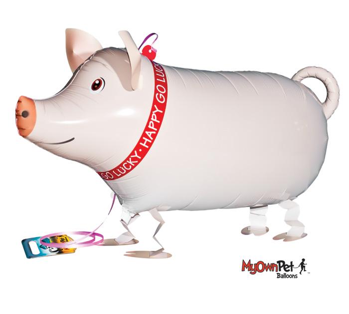 """26""""PKG PIG PET"""