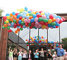 BALLOON NET 25'X14'