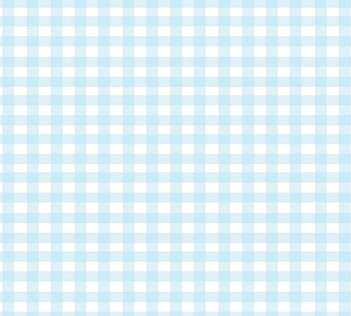 "24""X100' CELLO LT BLUE COUNTRY GINGHAM"