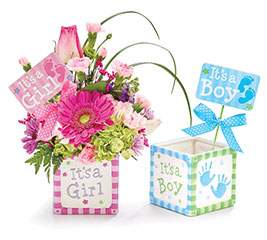 Wholesale gift planters pots gift baskets planters kit baby block planter with picks mightylinksfo